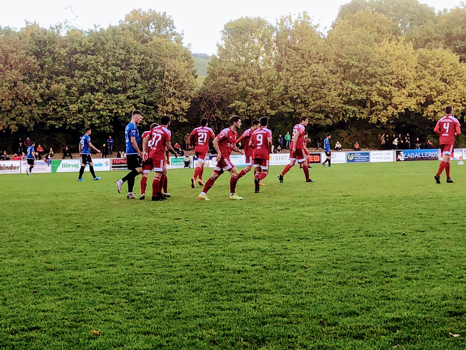 Neckarsulmer Sport-Union : SfD 1:1